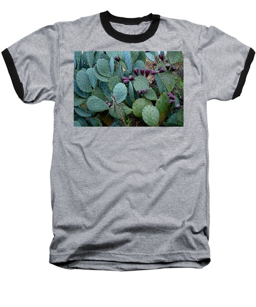 Baseball T-Shirt featuring the photograph Cactus Plants by Maria Urso