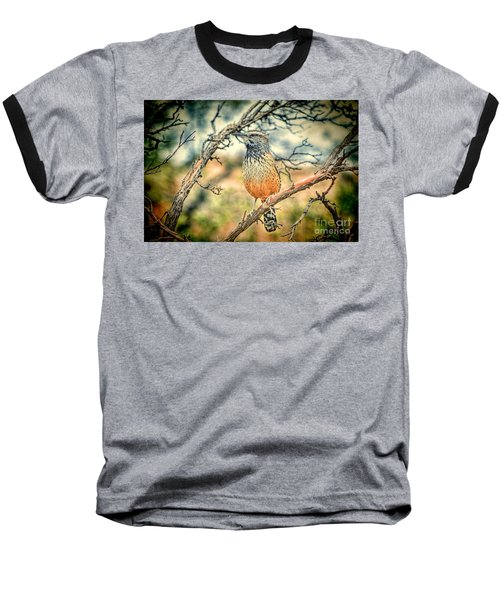 Cactus Wren Baseball T-Shirt