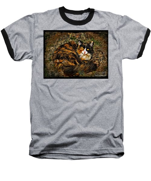 Calico Cat Baseball T-Shirt by Joan  Minchak