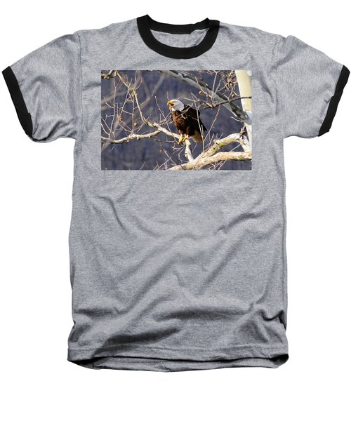 Baseball T-Shirt featuring the photograph Calling For His Mate by Randall Branham