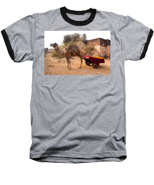 Camel Yoked To A Decorated Cart Meant For Carrying Passengers In India Baseball T-Shirt by Ashish Agarwal