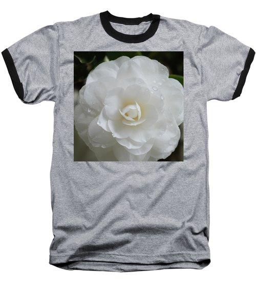 Camellia After Rain Storm Baseball T-Shirt