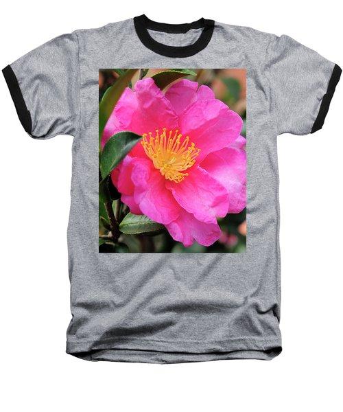 Camillia Baseball T-Shirt