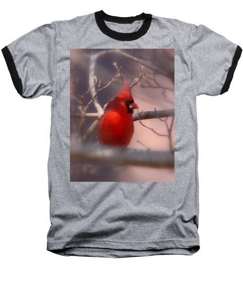 Cardinal - Unafraid Baseball T-Shirt