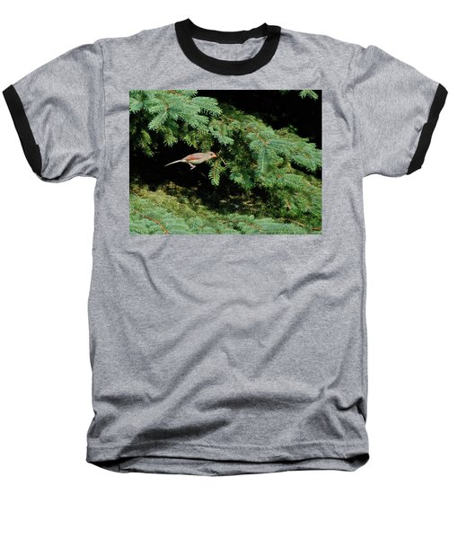Baseball T-Shirt featuring the photograph Cardinal Just A Hop Away by Thomas Woolworth