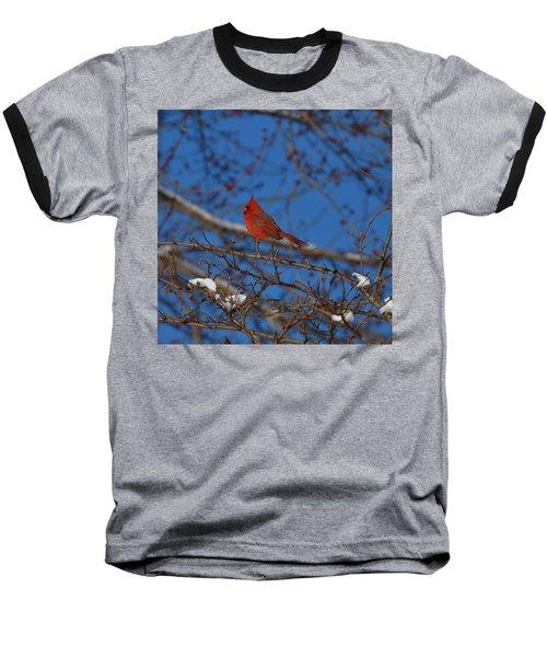 Cardinal Baseball T-Shirt