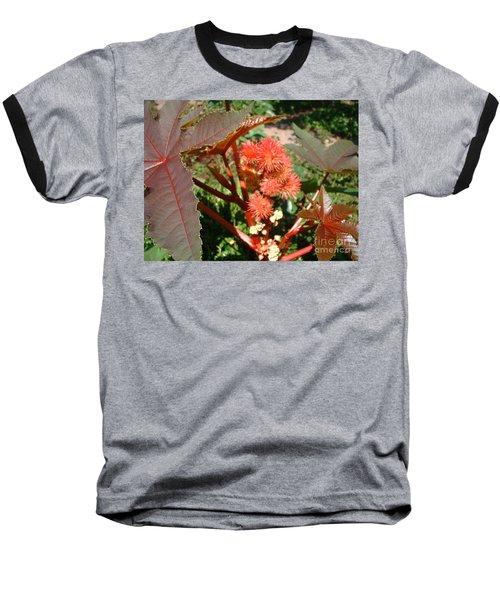 Castor Baseball T-Shirt by Mark Robbins