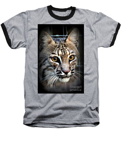 Baseball T-Shirt featuring the photograph Cat Fever by Kathy  White