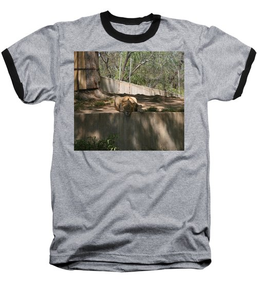 Baseball T-Shirt featuring the photograph Cat Nap by Stacy C Bottoms