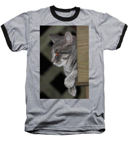 Cat On Steps Baseball T-Shirt