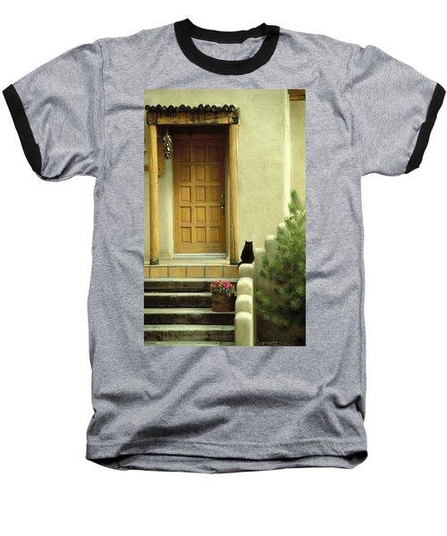 Cat Post Baseball T-Shirt