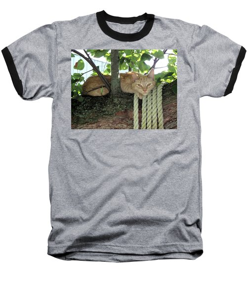 Baseball T-Shirt featuring the photograph Catnap Time by Thomas Woolworth