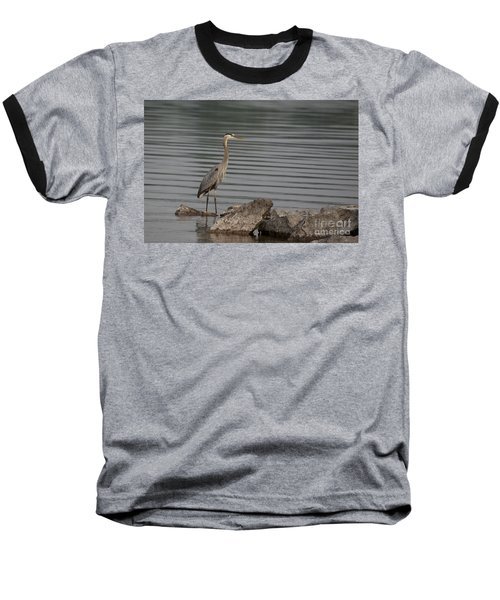 Baseball T-Shirt featuring the photograph Cautious by Eunice Gibb