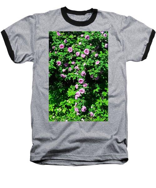 China Rose Baseball T-Shirt