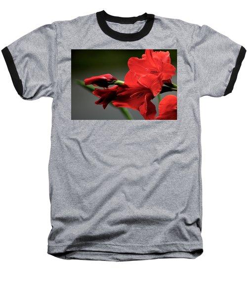 Chromatic Gladiola Baseball T-Shirt