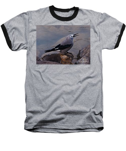 Clark's Nutcracker Baseball T-Shirt by Cheryl Baxter