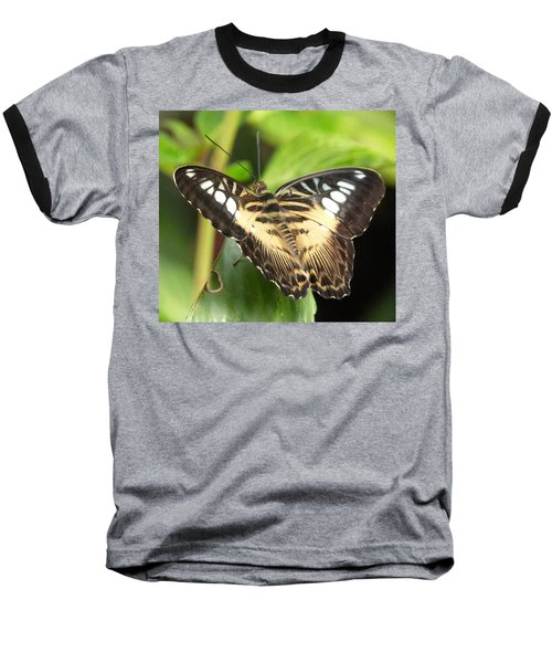 Baseball T-Shirt featuring the photograph Clipper Butterfly by Lynn Bolt