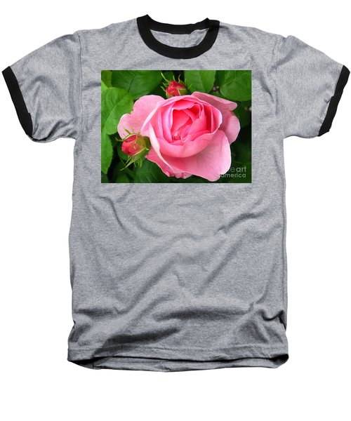 Rose And Rose Buds Baseball T-Shirt