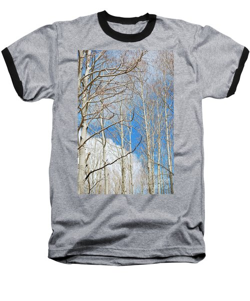 Cloudy Aspen Sky Baseball T-Shirt by Donna Greene