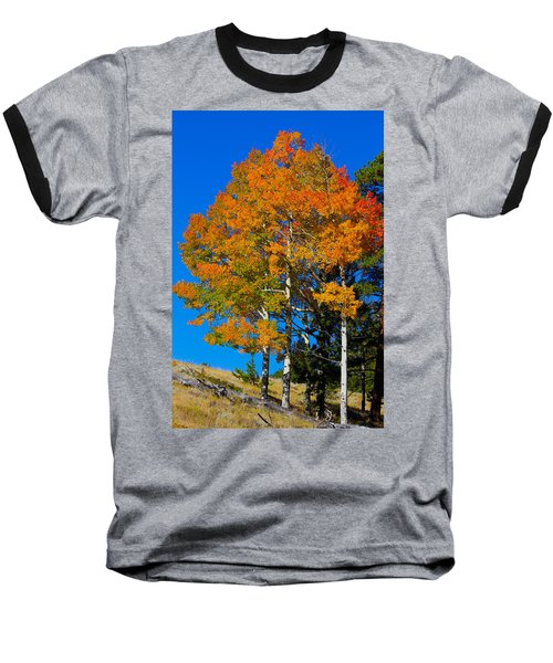Colorado Aspens Baseball T-Shirt