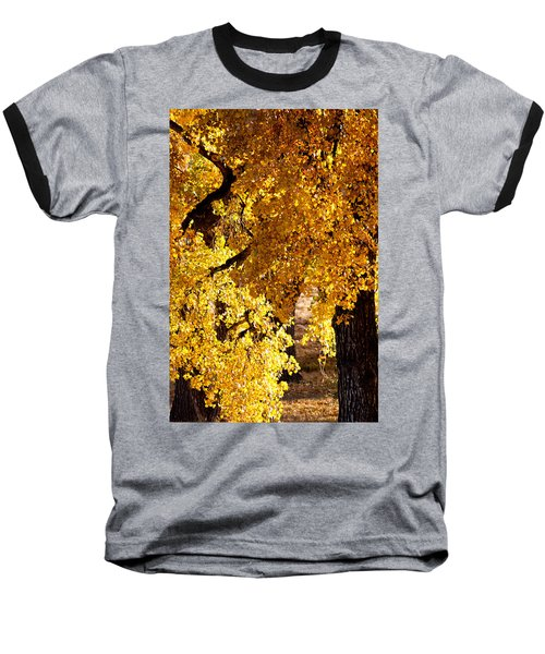 Colorado Gold Baseball T-Shirt