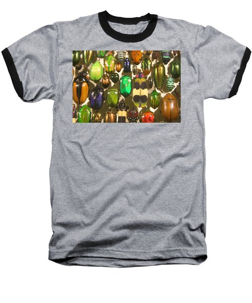 Colorful Insects Baseball T-Shirt by Brooke T Ryan