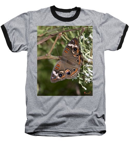 Common Buckeye Butterfly Din182 Baseball T-Shirt