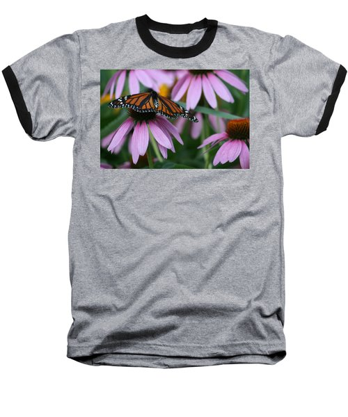Baseball T-Shirt featuring the photograph Cone Flowers And Monarch Butterfly by Kay Novy