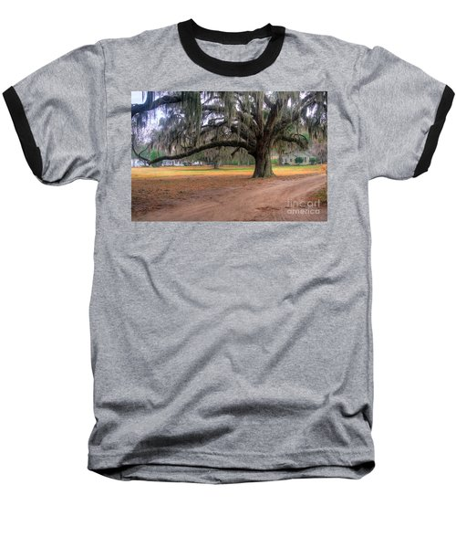 Coosaw Plantation Live Oak Baseball T-Shirt