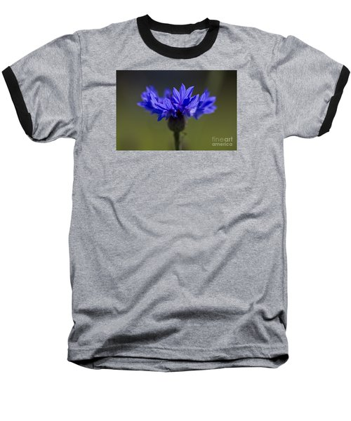 Cornflower Blue Baseball T-Shirt by Clare Bambers