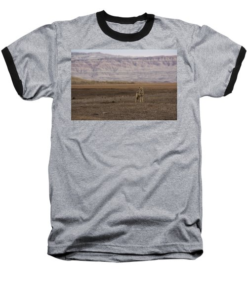 Coyote Badlands National Park Baseball T-Shirt