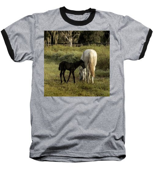 Cracker Foal And Mare Baseball T-Shirt