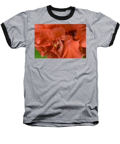 Curly Hibiscus Baseball T-Shirt