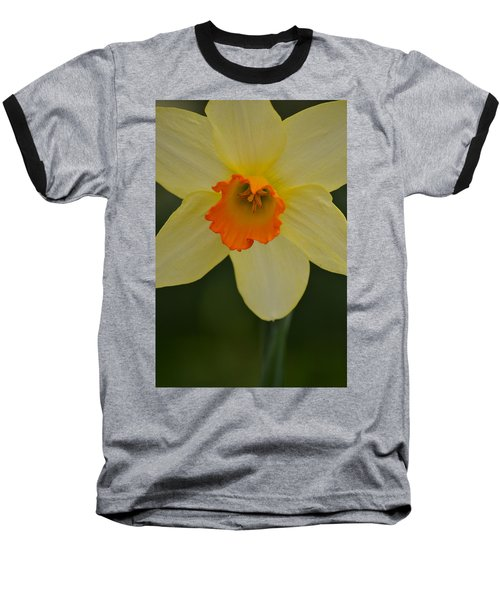 Daffodilicious Baseball T-Shirt