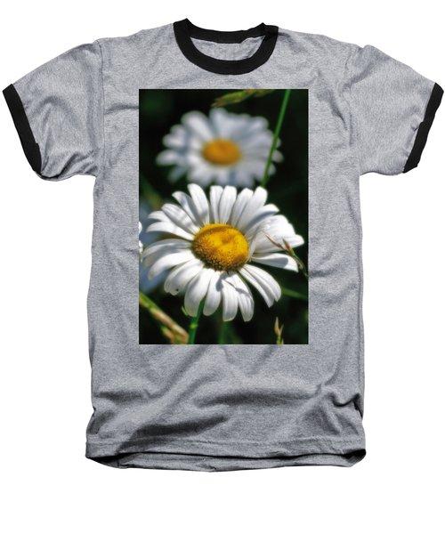 Daisies Aglow Baseball T-Shirt