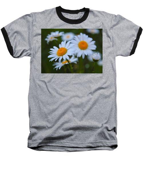 Baseball T-Shirt featuring the photograph Daisy by Athena Mckinzie