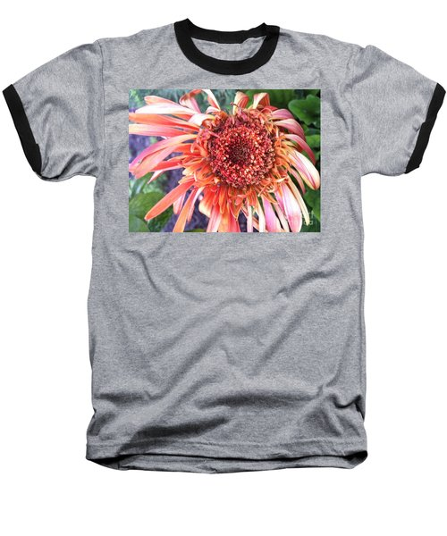 Daisy In The Wind Baseball T-Shirt