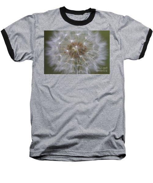 Dandelion Clock. Baseball T-Shirt