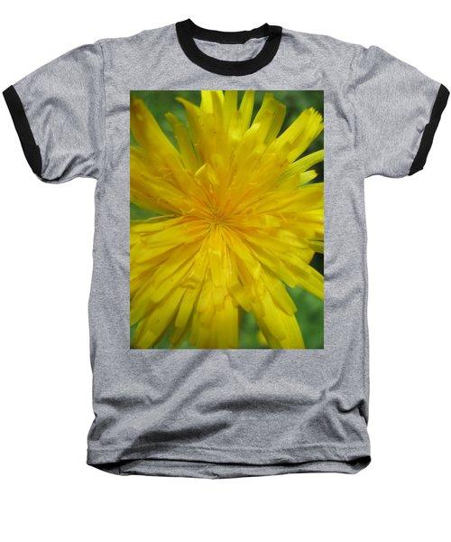 Dandelion Close Up Baseball T-Shirt by Kym Backland