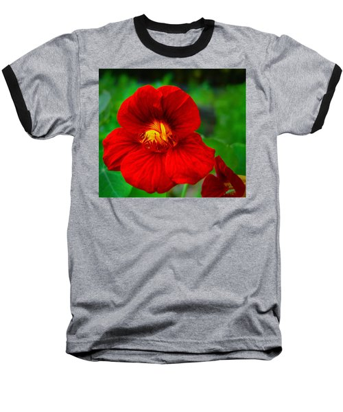 Day Lily Baseball T-Shirt by Bill Barber