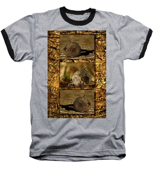Baseball T-Shirt featuring the photograph Dead Rosebud Triptych by Steve Purnell