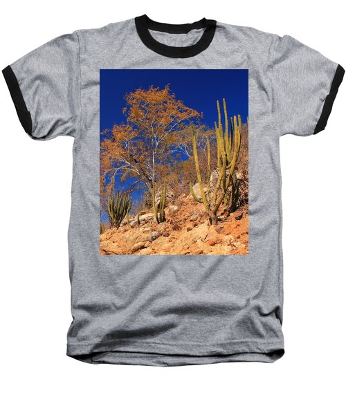 Desert Colors Baseball T-Shirt