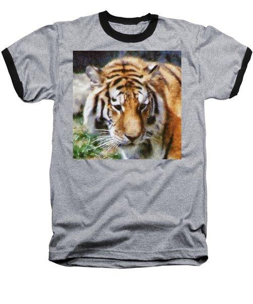 Detroit Tiger Baseball T-Shirt