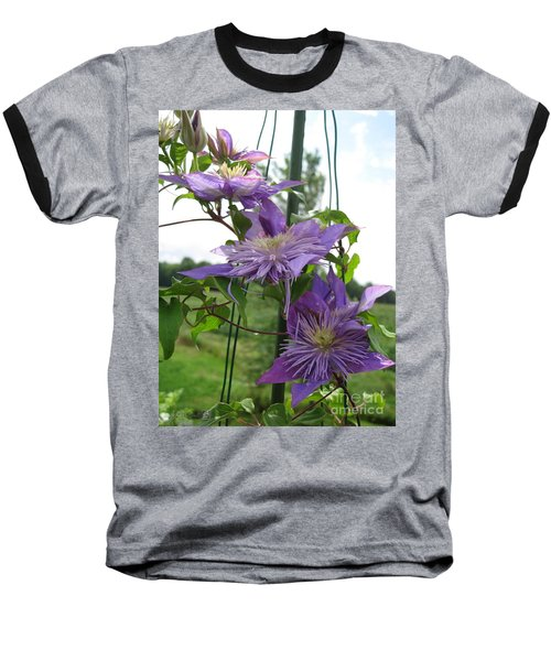 Baseball T-Shirt featuring the photograph Double Clematis Named Crystal Fountain by J McCombie