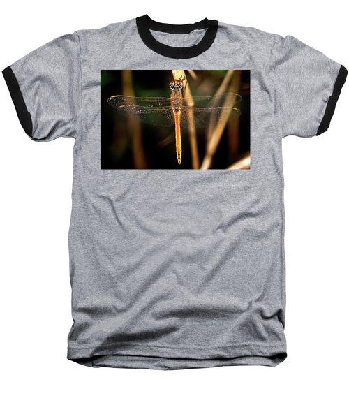 Baseball T-Shirt featuring the photograph Dragon Fly 1 by Pedro Cardona