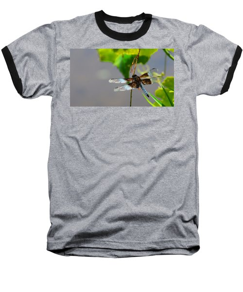Baseball T-Shirt featuring the photograph Dragonfly by Cindy Manero