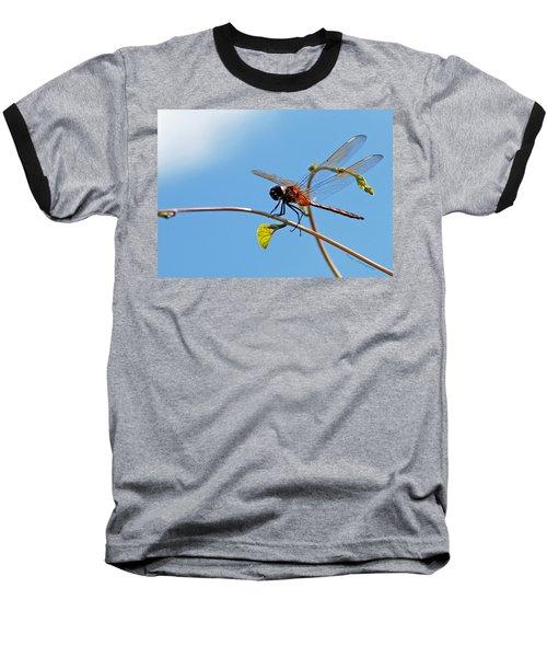 Dragonfly On A Vine Baseball T-Shirt by Kay Lovingood