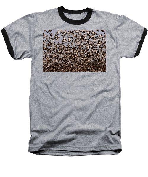 Duck Wall Baseball T-Shirt