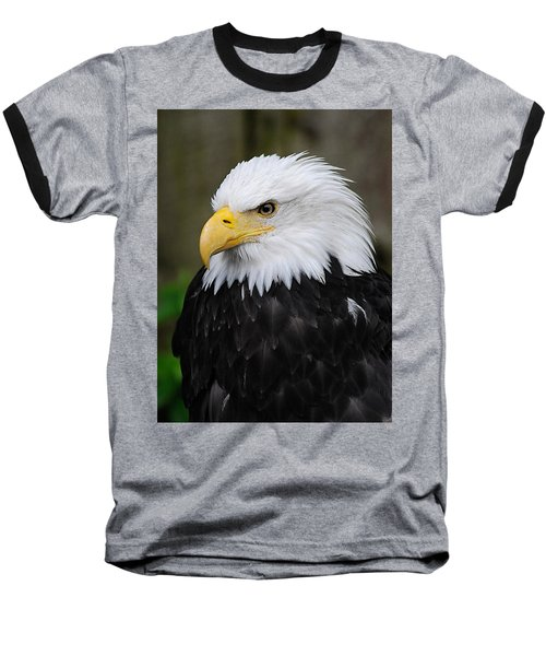 Eagle In Ketchikan Alaska 1371 Baseball T-Shirt
