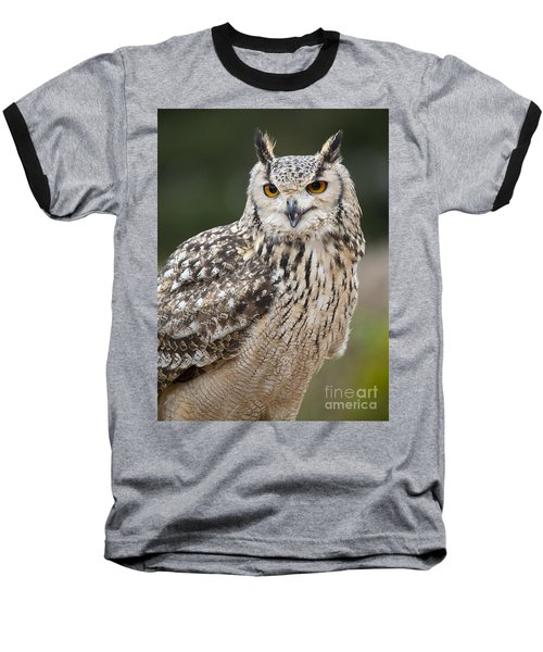 Eagle Owl II Baseball T-Shirt